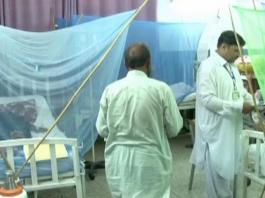 Dengue Peshawar