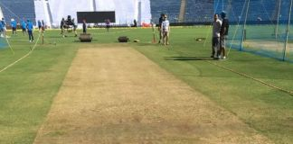 pitch curator being investigated