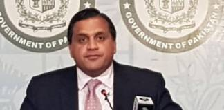 Pakistan making all out efforts for peace in entire region: FO