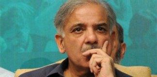 Shehbaz Sharif fails to appear before NAB in Punjab companies scandal