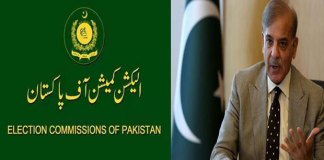Shehbaz moves ECP for inclusion of independent senators in PML-N