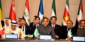 PM Abbasi reiterates Pakistan's support for Palestinian state at OIC summit