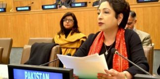 Failure to mobilize global funds affecting SDGs implementation: Pakistan