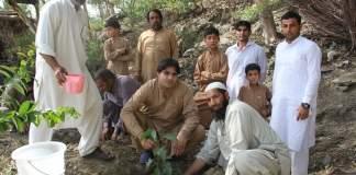 Pashto singer Karan Khan tree plantation