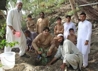 Pashto singer Karan Khan tree plantation