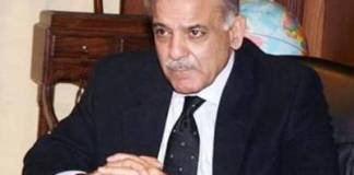 Govt, opposition united like rock on Kashmir issue: Shehbaz Sharif