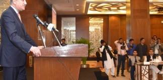 Overseas Pakistanis playing pivotal role in country's development: FM