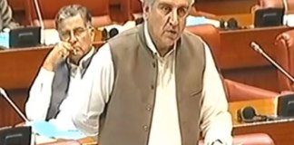 CPEC to be completed despite impediments by certain elements: FM Qureshi