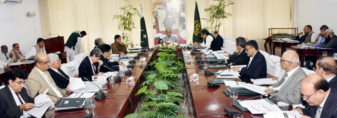 ECC constitutes committee to review cotton prices
