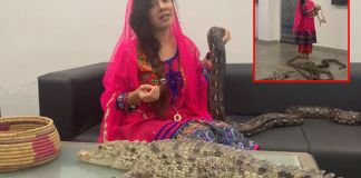 Rabi Pirzada lands into trouble for posing with reptiles