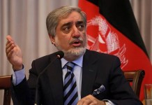 Afghan chief executive wants halt to election recount