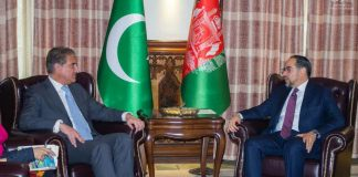 FM Qureshi discusses regional peace with Afghan Foreign Minister