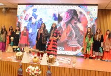 Gov to introduce Pakistani Arts & Culture globally
