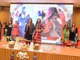 Gov to introduce Pakistani Arts & Culture globally