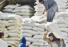 Flour Mills Association increases flour prices by Rs120 per 20 kg