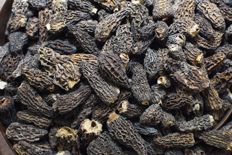 Kashmiri guchi mushroom