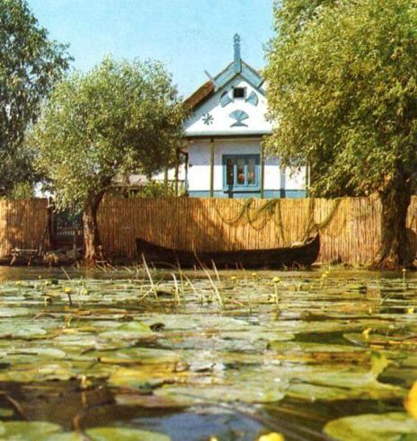 what kids can do in Danube Delta mila 23 house