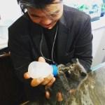 子猫に癒されて