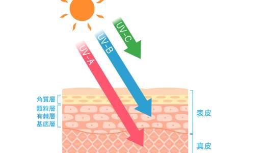 1分で読める「日光浴は絶対するな!紫外線が肌に与える悪影響」