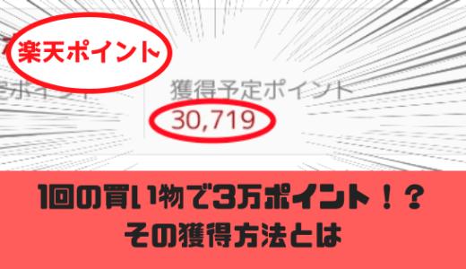 楽天カードで月30000ポイント貯めた方法!東京ディズニー旅行代もチケット料金も浮くかも!?