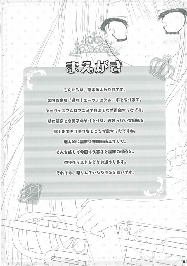 響け!ユーフォニアム エロマンガ・同人誌3003
