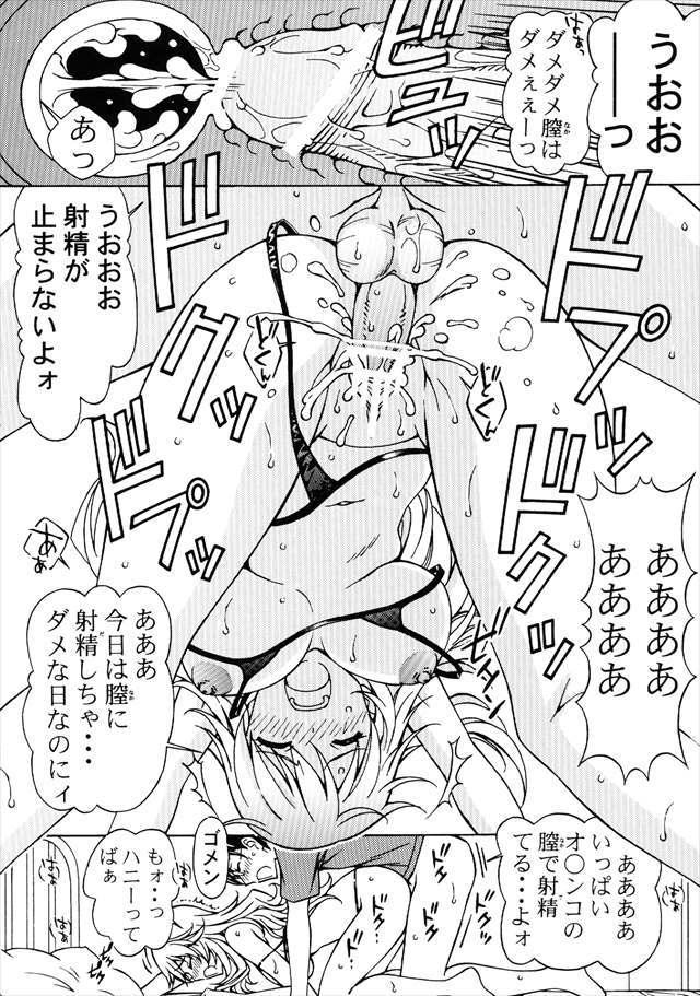 アイドルシリーズ エロマンガ・同人誌14017