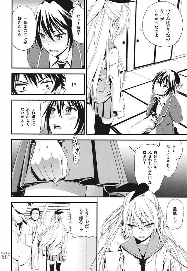 ニセコイ エロマンガ・同人誌35013
