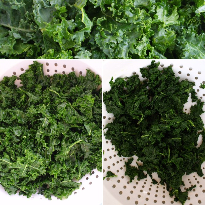 Kale, from raw to squeezed