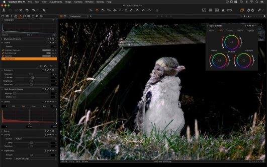 Capture One Pro 12 Serial Number Free