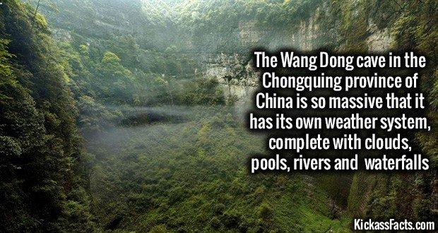 1088 Wang Dong Cave