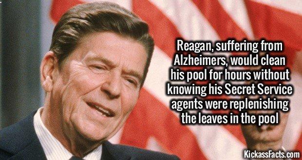 1366 Reagan