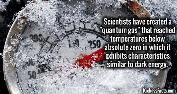 1479 Quantum Gas
