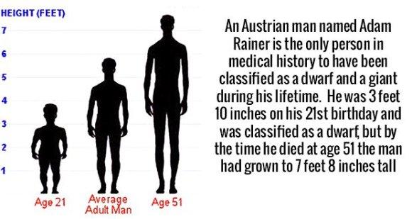 699 Adam Rainer