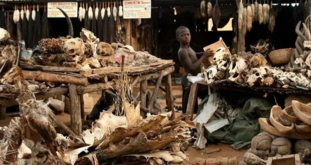 004_Lome's Voodoo Market-Creepiest Places on Earth