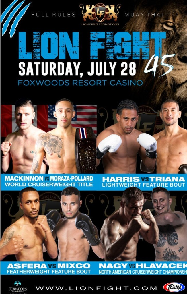 Lion Fight 45 Poster