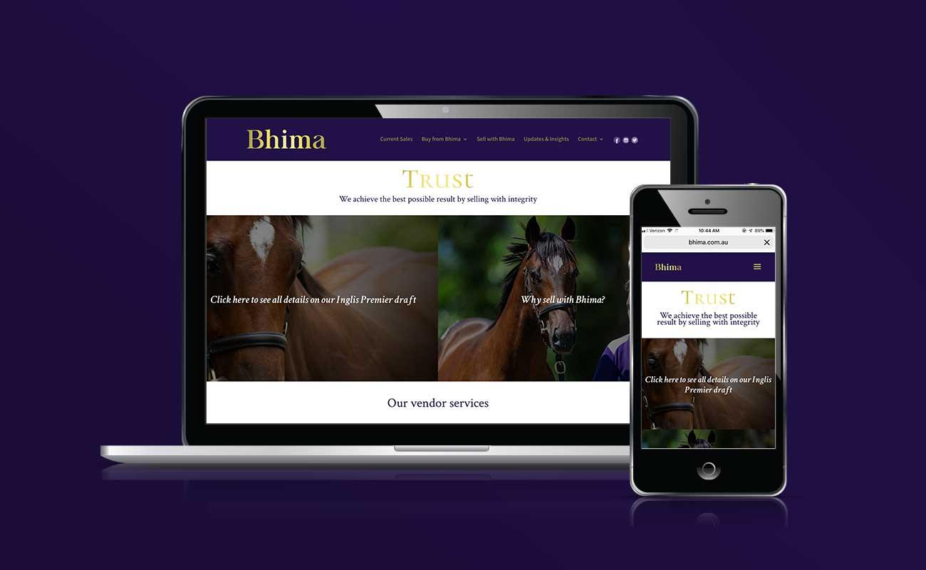 Bhima-Portfolio3