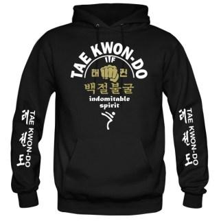 taekwondo indomitable spirit