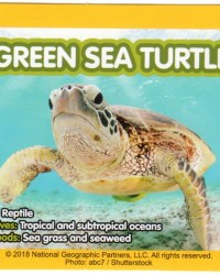 2018-april-weird-but-true-national-geographic-mcdonalds-happy-meal-toys-cards-green-sea-turtle-back.jpg