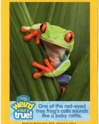 2018-april-weird-but-true-national-geographic-mcdonalds-happy-meal-toys-cards-red-eyed-tree-frog-front.jpg