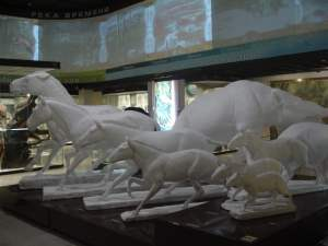 Horse evolution at the State Darwin Museum, Moscow