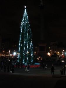 Trafalgar Square and a very tall tree at Christmas