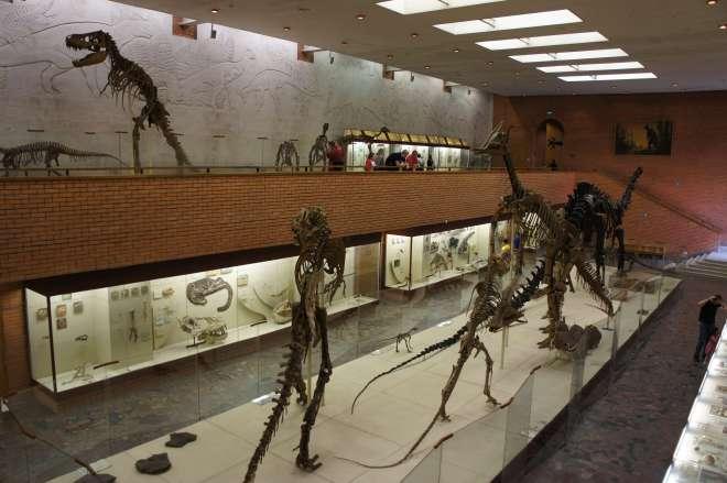 Orlov Paleontology Museum Moscow