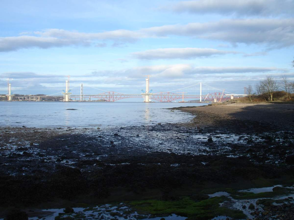 Inchcolm Island and the Forth Bridge by boat