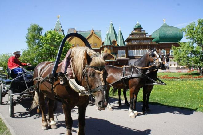 Horse and carriage ride Kolomenskoye Park Moscow