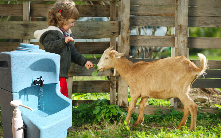 Why soap and water hand washing is essential for everyone after animal contact