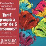 Aquarium Guadeloupe Toussaint