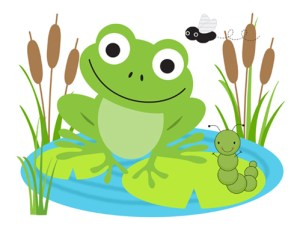 all about frogs for kids and teachers - Images Of Frogs