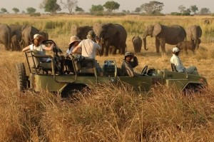 Game Drive in Kidepo