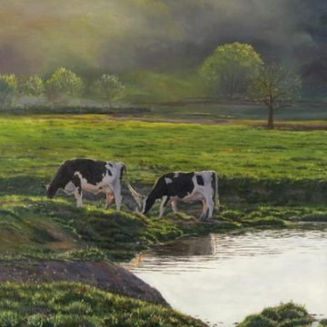 Maple Dell Holsteins