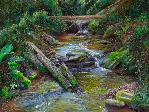 Cabin Run Falls
